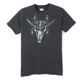 Cattle Skull  - PTCS